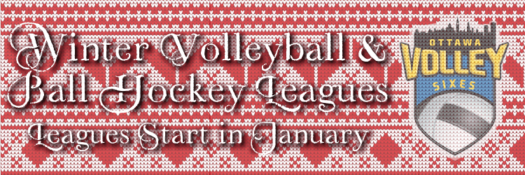 Beach Volleyball Leagues and Floor Hockey Leagues