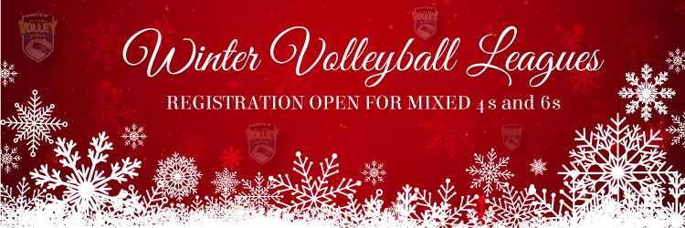 Winter Volleyball Leagues and Ball Hockey Leagues